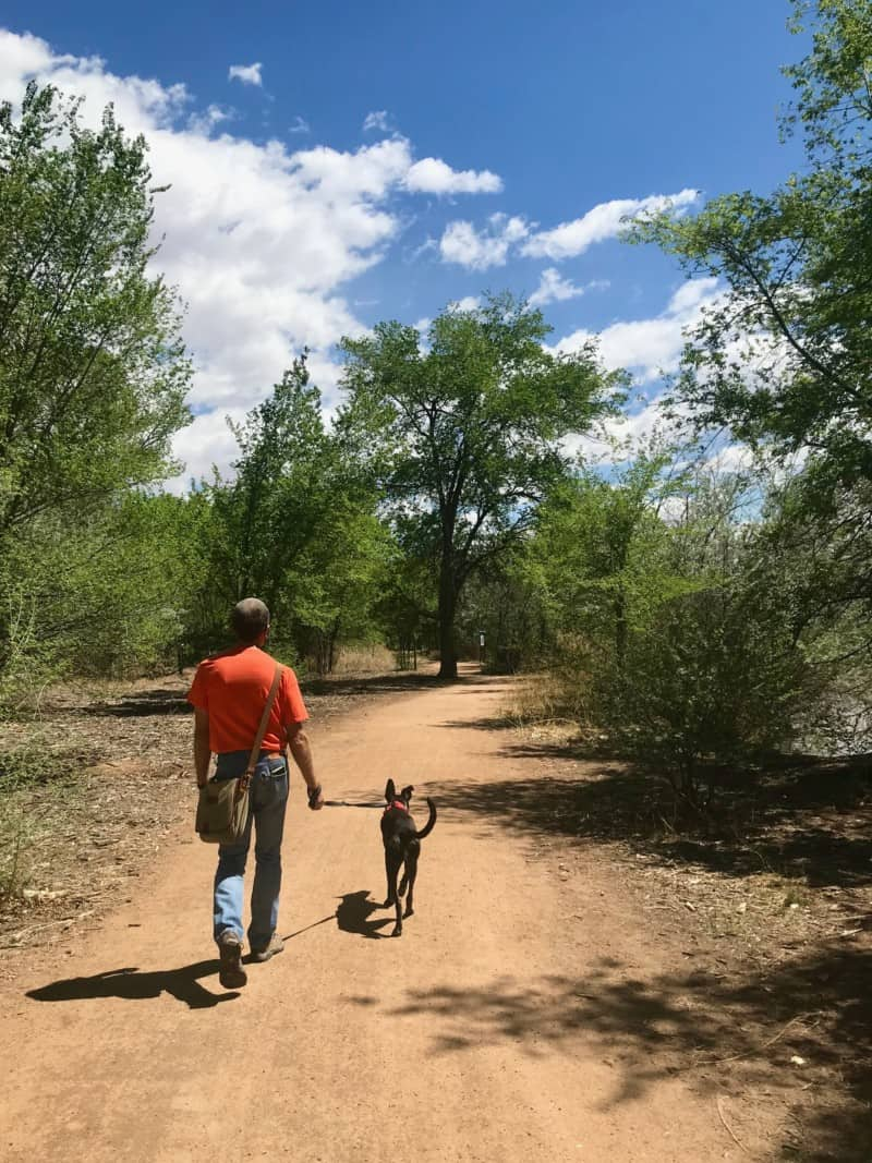 A man and a dog walk on a dirty path suitable for pets in Albuquerque, New York