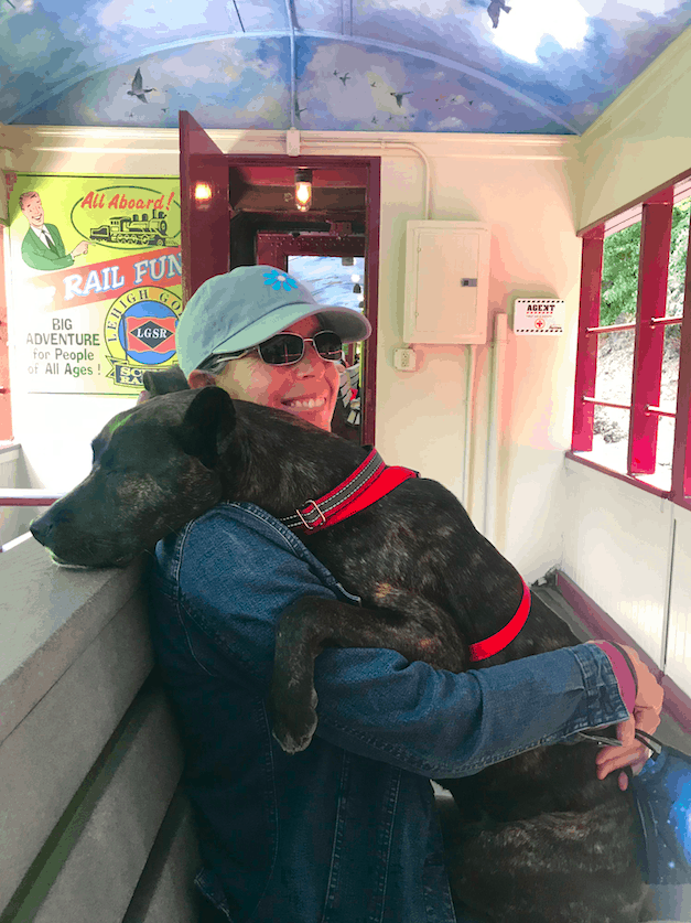 A woman in a hat holding a tiger dog on the scenic Lehigh Gorge Railroad in Jim Thorpe, Pennsylvania