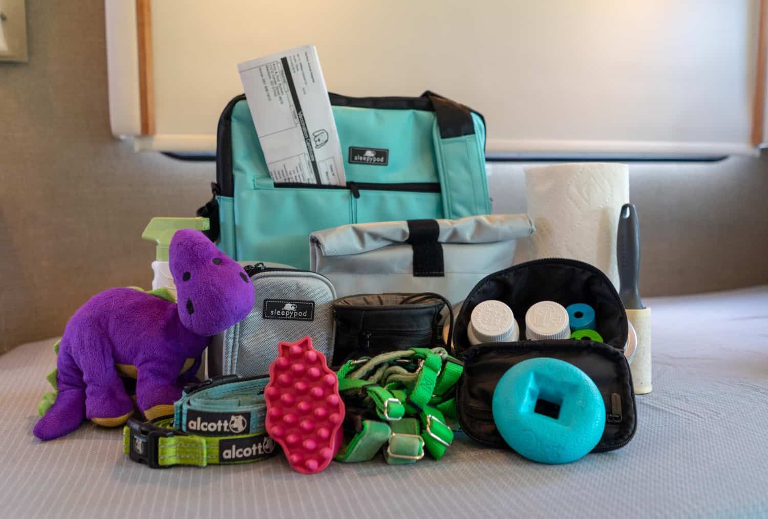 A bag with all the most important things that your dog will have to go on a night trip.