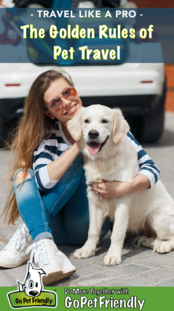 A woman in sunglasses traveling with a happy golden retriever puppy