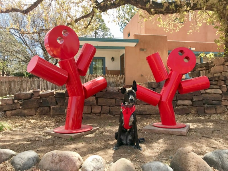 A tiger dog in a red belt posted with a sculpture of two dancing figures in Santa Fe, New Mexico
