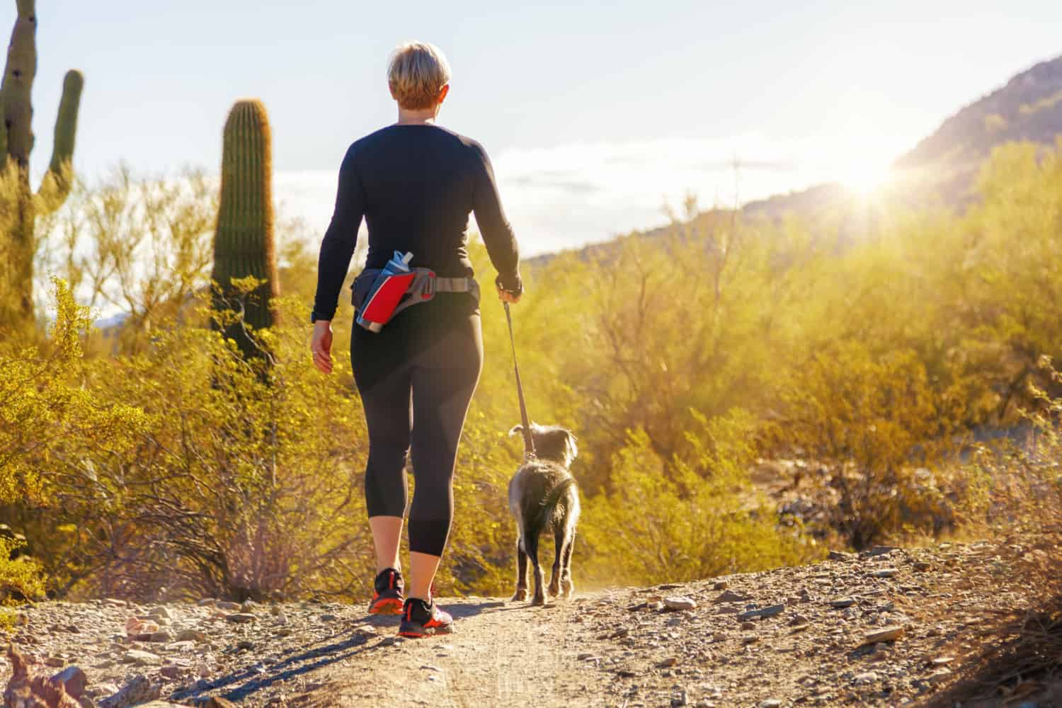 A woman walking with a dog in Saguaro National Park in Arizona
