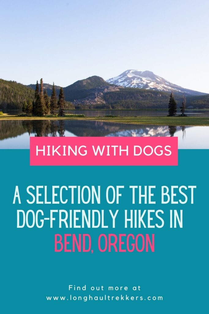 Roads suitable for dogs in Bend, Oregon
