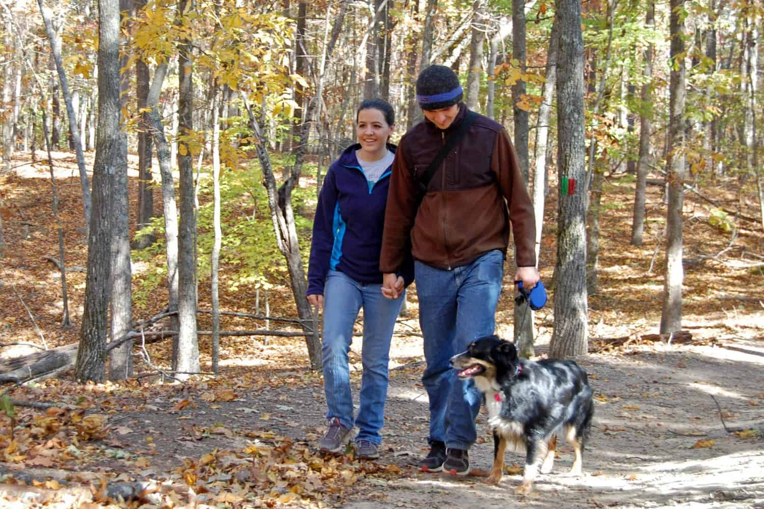 Red Top Mountain State Park Friendly trails suitable for dogs